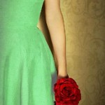A Garota com a Rosa – Uma historinha pra você refletir