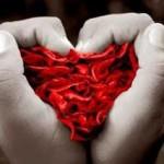 Diferença entre amor e paixão