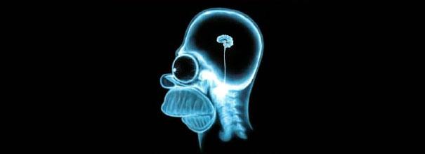 O tamanho do cérebro de uma pessoa preconceituosa