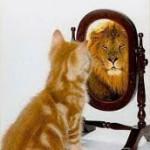 A vida é um espelho