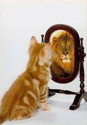 Espelho, espelho meu, fala sério comigo