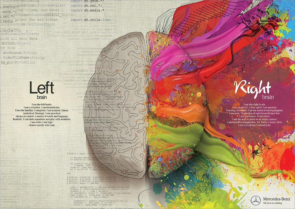 Diferenças entre o lado esquerdo e direito do cérebro