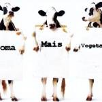 Comer ou não comer carne, eis a questão