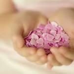 Generosidade: Viva e deixe viver