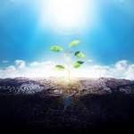 Pessimismo ecológico, não caia nessa