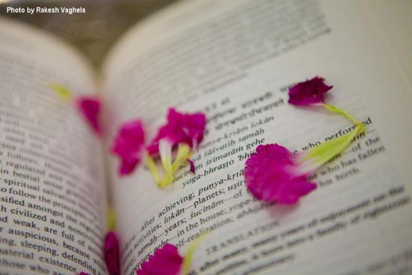 Livros iluminados