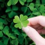 7 dicas para melhorar sua sorte