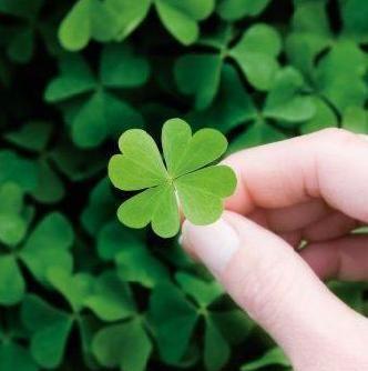 A sorte é você quem faz