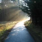 Atitudes para abrir caminhos