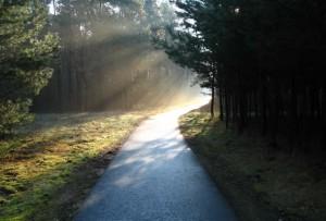 Sempre há uma luz no caminho