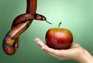Adão botou a culpa em Eva, que botou a culpa na Serpente
