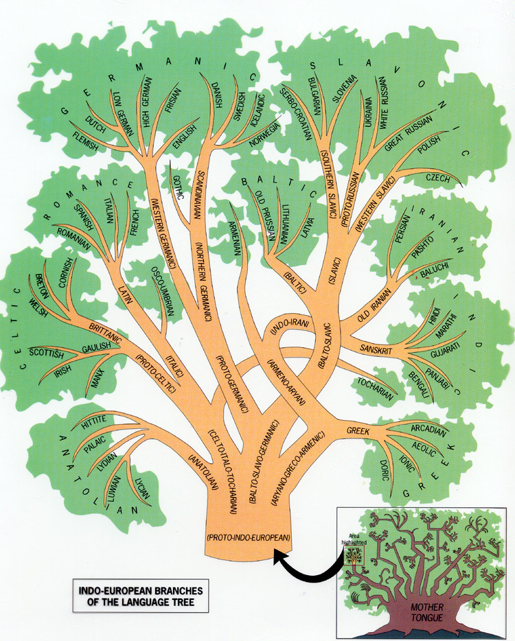 Árvores genealógica das linguagens indo-europeias