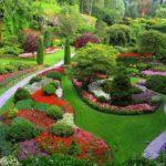 Cultive seu Jardim